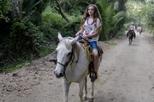 Excursão a cavalo em Paraty