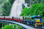 Kuranda scenic railway day trip from palm cove in palm cove 39337