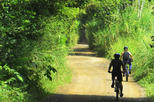 Pereira full day bike tour local means of transport route in pereira 287569