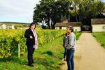 Private Tour: Burgundy Day Tour with Wine Tasting from Lyon