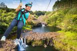 Umauma Falls and 9-Line Zipline Experience on the Big Island