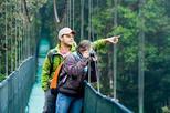 Arenal Volcano Combo 1 Hanging Bridges & Baldi Hot Springs Private Tour