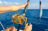 Private deep sea fishing tour from abrantes in salvador 364360