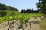 Private guided bike tour around l isle sur la sorgue from avignon in avignon 406306