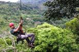 Monteverde Rainforest Canopy Tour with Ziplines and Rappelling