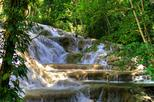Day Trip to Dunn's River Falls from Montego Bay