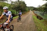 Bike Ride Tour from Arenal Volcano to El Castillo