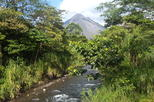 Arenal Tour: Volcano Hike, Hanging Bridges, and Hot Springs