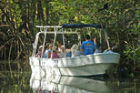 Damas Island Mangrove Tour from Quepos