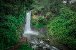 San Jose to Doka Estate and La Paz Waterfall Gardens Admission