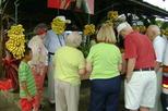 Shore Excursion: Limon Highlights Tour