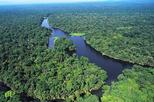 Tortuguero Costa Rica National Park One Day Guided Tour