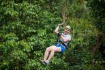 Rainforest Canopy Tour in Pattaya