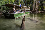 Hartley s crocodile adventures day trip from palm cove in palm cove 314629