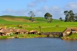 Excursão para grupo pequeno: Excursão pelo set de filmagem de Hobbiton de O Senhor dos Anéis em Auckland