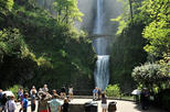 Columbia Gorge Waterfalls, Wine Small Group Tour from Portland
