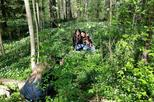 Private Bike Tour in Helsinki Forest