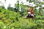 Canopy Zipline Tour with Superman Flight