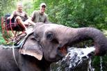 Parque Nacional de Khao Yai e passeio de um dia em elefantes partindo de Bangcoc