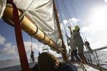Classic Sailboat Harbor Morning Cruise