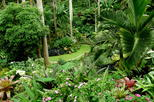 Barbados Sightseeing Tour: Hunte's Garden and St Nicolas Abbey