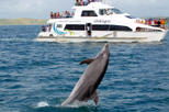 Best of the bay supercruise original cream trip in bay of islands 172770