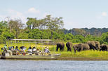 Chobe national park day trip from victoria falls in victoria falls 377255
