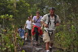 Full Day Combo Tour Best of Arenal Including: Hanging Bridges, La Fortuna Waterfall, Volcano Hike and Hot Springs