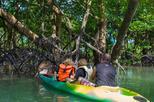 Private monkey jungle cruise phuket day eco tour in phuket 416987