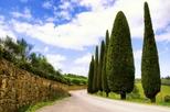Sabor de Chianti: queijo toscano, vinho e almoço de Florença