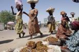 Full-Day N'Djamena City Tour