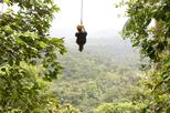 San Jose Rainforest Canopy Zipline Eco-Adventure with Entry