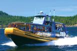 Excursão com observação de baleias saindo de Vancouver