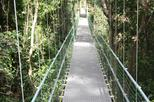 Roatan Shore Excursion: Hanging Bridges Eco Tour and Beach Break