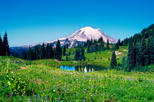 Mt. Rainier National Park Full-Day Tour from Seattle