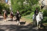 Horseback Riding in Central Park