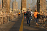 Private Brooklyn Bridge Guided Walking Tour