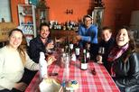 The tannat wine experience from montevideo in montevideo 301100