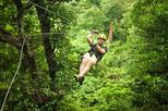 Antigua Zipline Canopy Adventure from St John?s