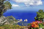 Cruzeiro de um dia em Capri saindo de Sorrento