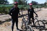 Wine country biking tour in santa barbara in santa barbara 418465