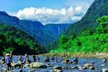 Private tour sylhet full day tour of ratargul and bisnakandi in sylhet 343163