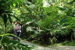 Nature Walk at Ecological Park and Butterfly Garden Danaus