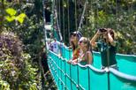 Monteverde Sky Adventure Park Walking Tour with Guide