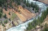 Self-Guided Tour of Yellowstone Upper Loop from Cody