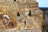 Self-Guided Yellowstone Tour from Gardiner