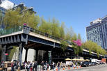 High Line and Greenwich Village NYC Private Walking Tour