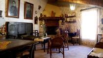 Visit winery and wine tasting, Tarragona, Wine Tasting & Winery Tours