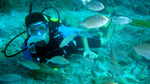 Scuba Diving from Marmaris, Marmaris, Snorkeling