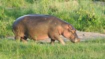 Special Safari Package, Nairobi, Cultural Tours